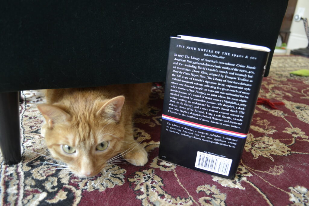 An ornage tabby peers out from under a footstool, hiding behind David Goodis' Five Noir Novels.
