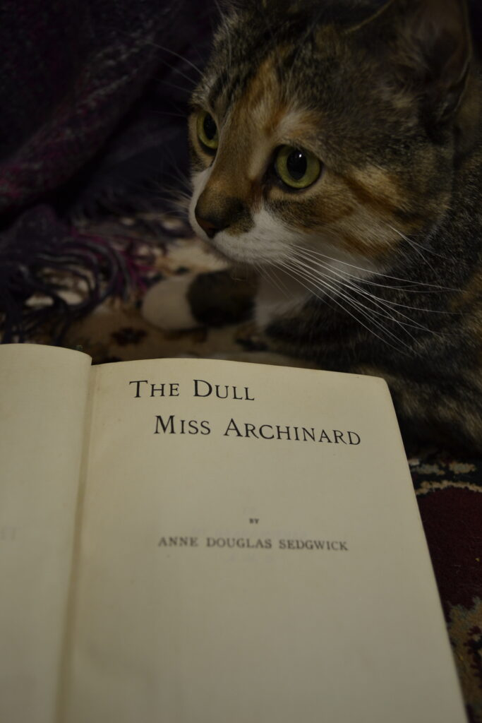 A calico tabby sits beside an open copy of The Dull Miss Archinard.