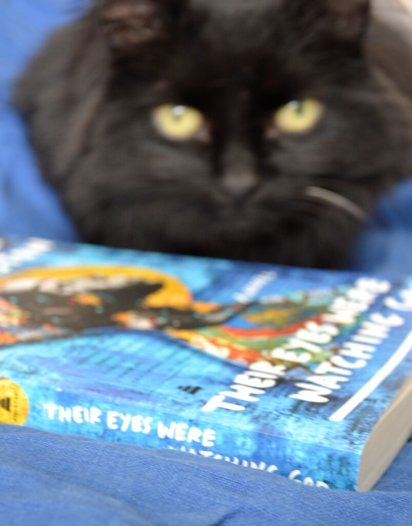A black cat sits behind a bright blue copy of Their Eyes Were Watching God.