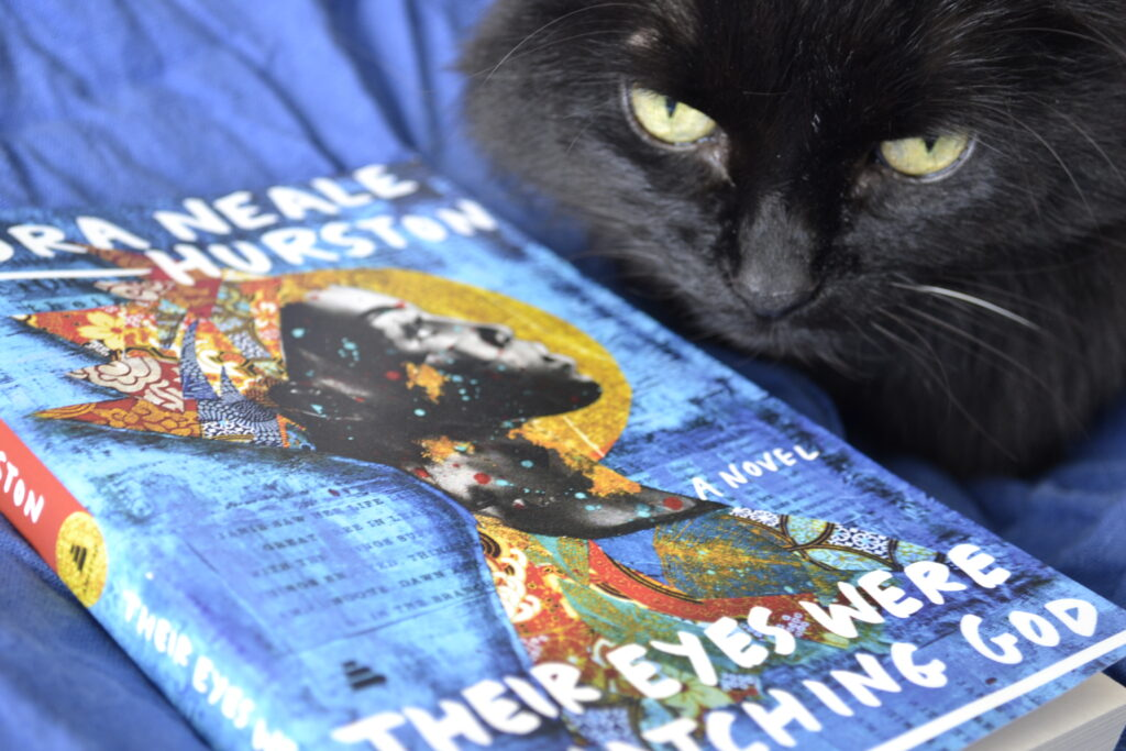 A black cat sits beside a bright blue copy of Their Eyes Were Watching God.