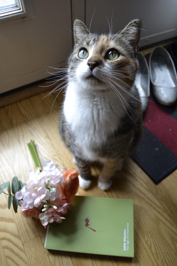 A calico tabby sits beside pink flowers and The Age of Innocence.