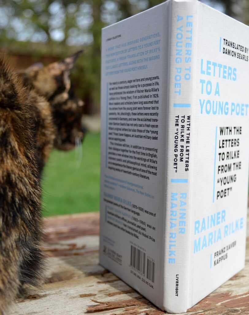 A tortoiseshell kitten crouches beside Letters to a Young Poet.