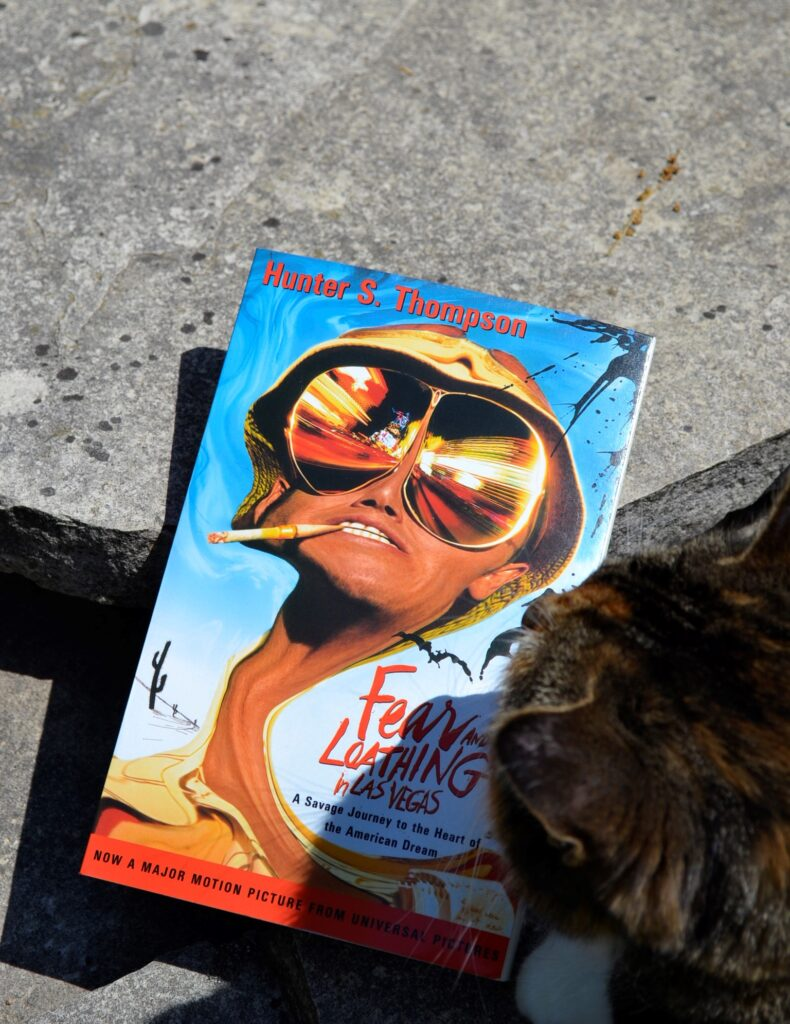 A calico tabby sniffs Fear and Loathing in Las Vegas.