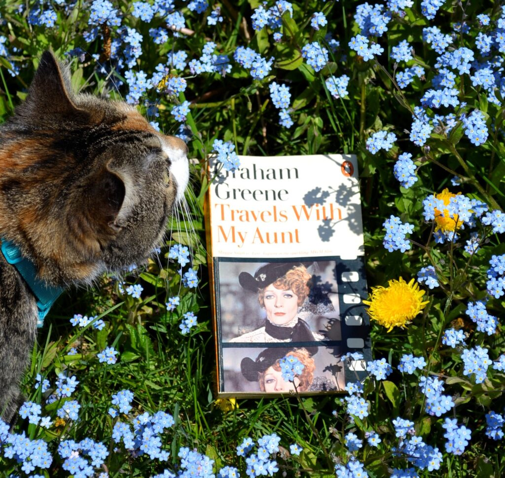 A calico tabby stands amongst small blue flowers surrounding Travels With My Aunt.