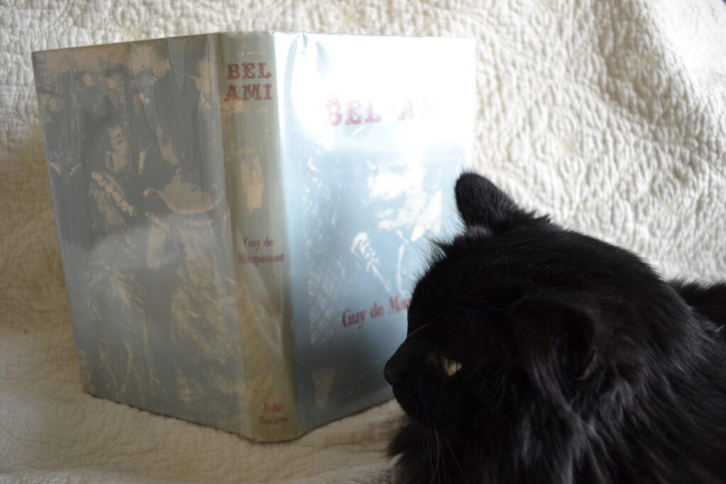 A fluffy black cat sits beside a copy of Bel-Ami.
