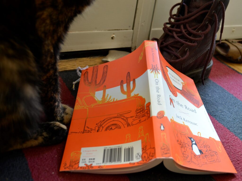 A tortoiseshell cat beside an orange book and a brown boot.