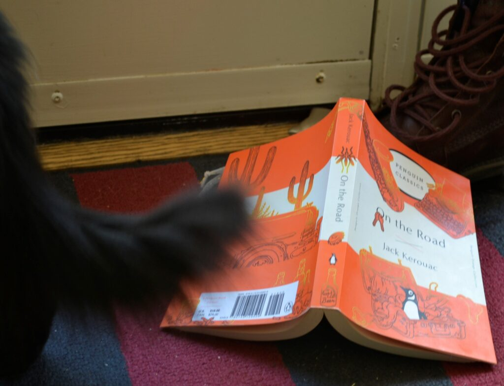 A fluffy black tail over an orange book and a brown boot.