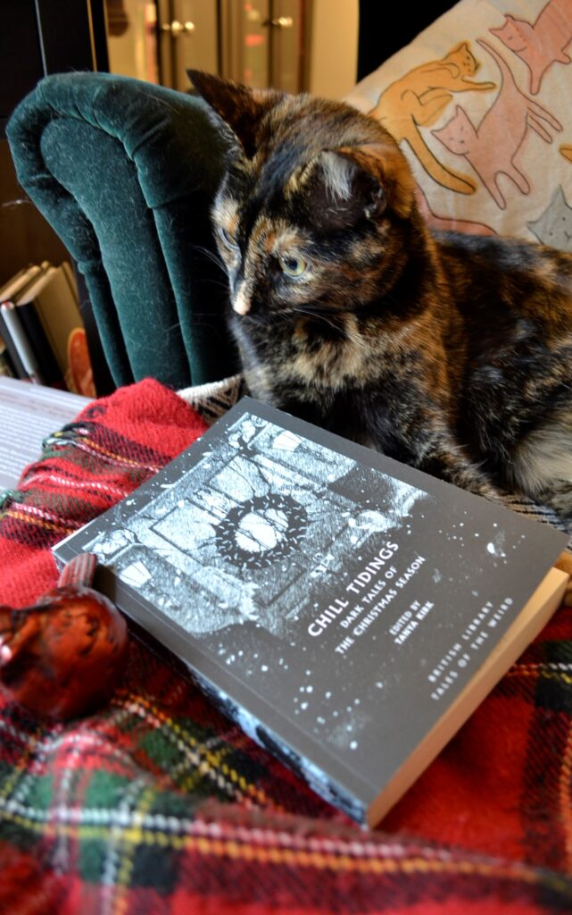 A tortoiseshell cat looks down its nose at Chill Tidings.