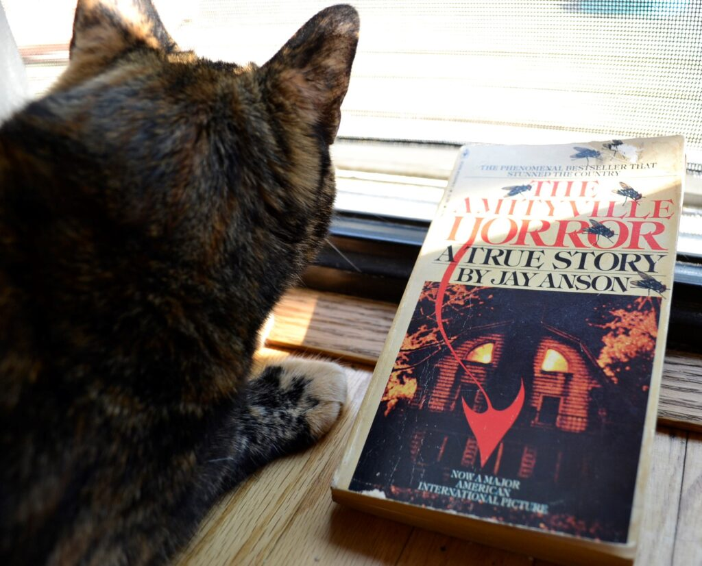 A tortoiseshell cat crouched beside the demonic cover of The Amityville Horror.